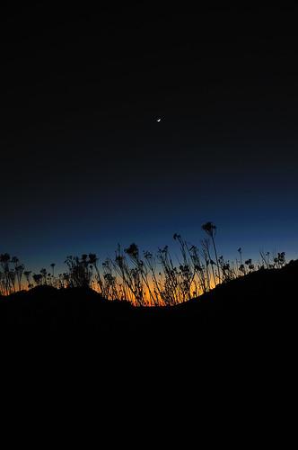 sunset moon newmexico twilight foryou silhoutette nikon18200mmf3556gvr nikond300