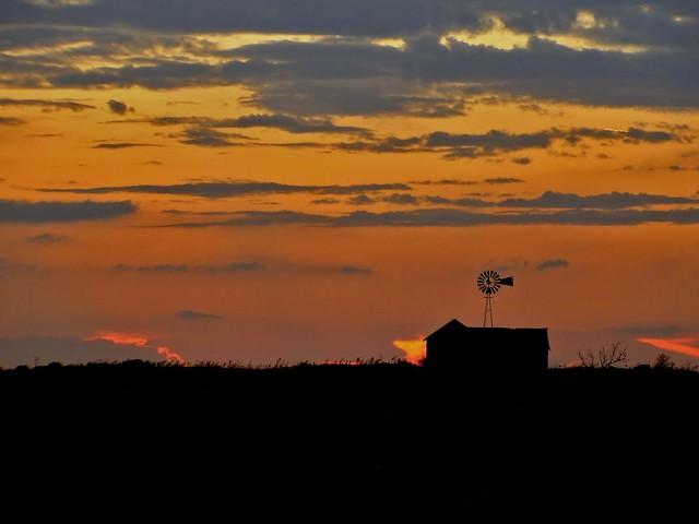 Homestead Sunset