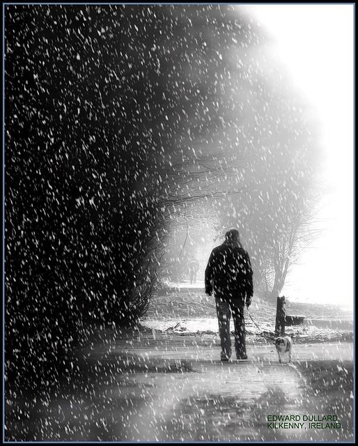 SNOWY MORNING WALK. KILKENNY, IRELAND.