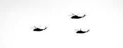 Sikorsky CH 53 | by Mario De Leo