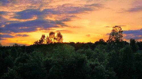 autumn trees sunset fall paul evening day cloudy g sony a33 americana arkansas newton ozark fayetteville paulg paulnewton sonya33 paulgnewton