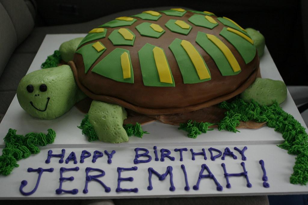 Stupendous Jeremiahs Turtle Birthday Cake A Photo On Flickriver Funny Birthday Cards Online Alyptdamsfinfo
