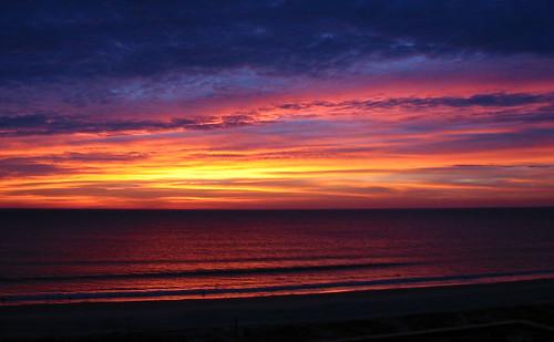 amelia sunrise #1