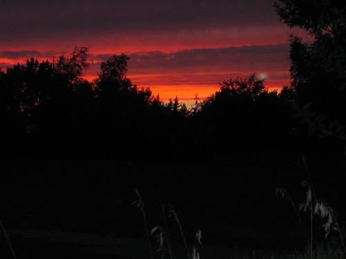 sunset828
