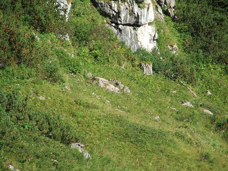 Alpenlandschaft Nr. 3