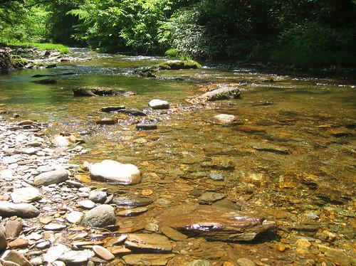 appatrip roadtrip tn tennessee lostcreek creek geotagged geolat3516 geolon8448