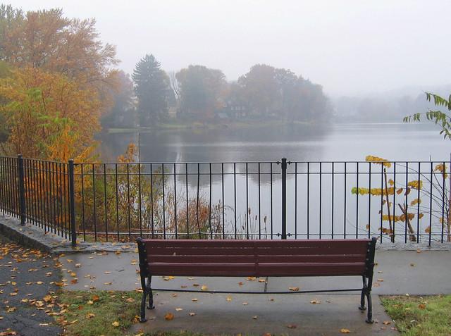 Bench at Ell Pond