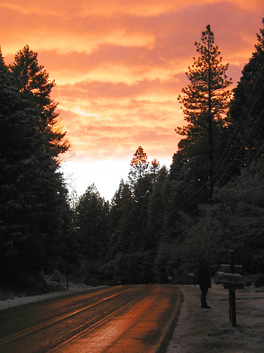california road christmas trees winter sunset snow reflection silhouette clouds forest lisa nevadacity explore norcal nevadacounty sierranevadamountains explore264on11805