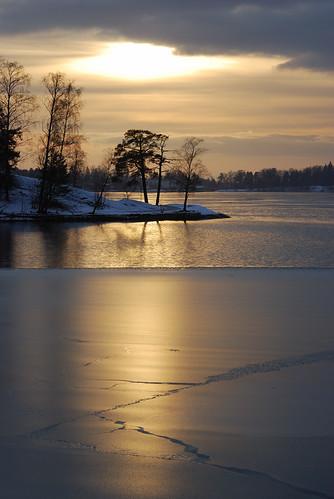 trees winter light sunset sea reflection ice finland landscape helsinki nikon view thin blueribbonwinner 85mmf14 betterthangood theperfectphotographer