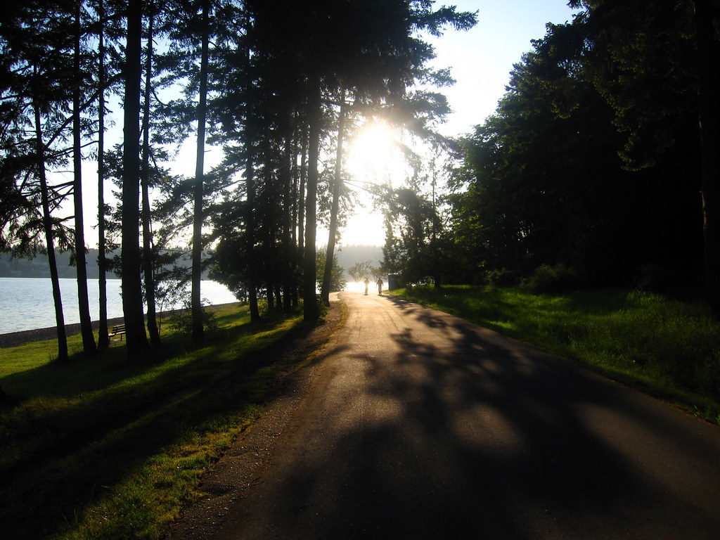 Morning Stroll
