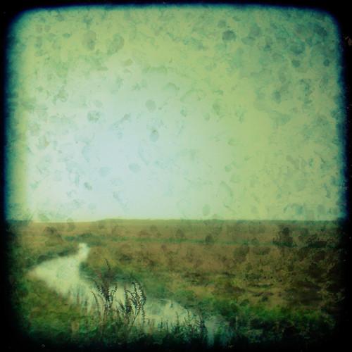 texture nature fog polaroid connecticut foggy estuary grasses marsh saltmarsh stonington wildliferefuge ttv throughtheviewfinder barnislandmarsh barnisland barnislandwildliferefuge estuaryofnationalsignificance courtnayjaniak