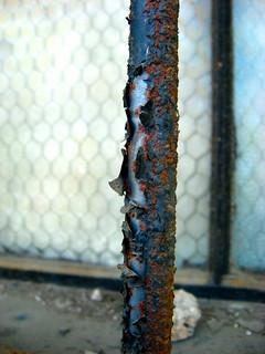 Peeling Rusted Window Bar