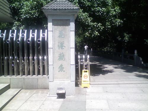 花港观鱼.JPG