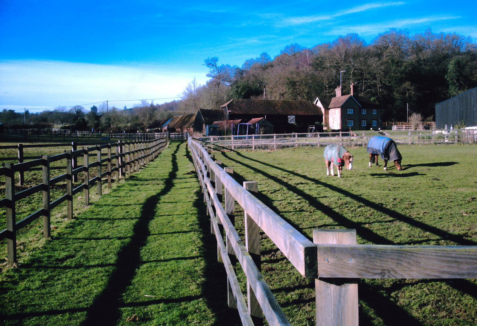 Book 1 Walk 2 Wanborough to Godalming Coneycroft Farm near Compton Surrey. D.Allen Vivitar 5199mp