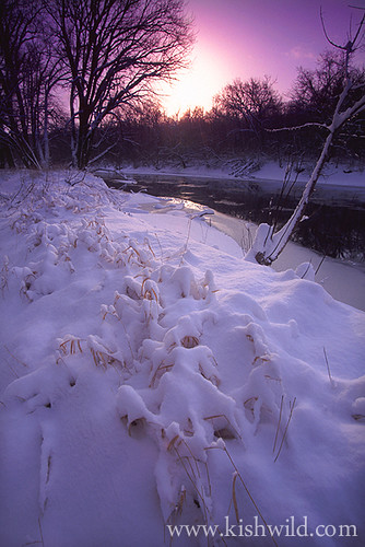 winter sun snow cold ice sunrise river illinois rockford kishwaukeeriver winnebagocounty northernillinois kishwaukee blackhawkspringsforestpreserve blackhawksprings