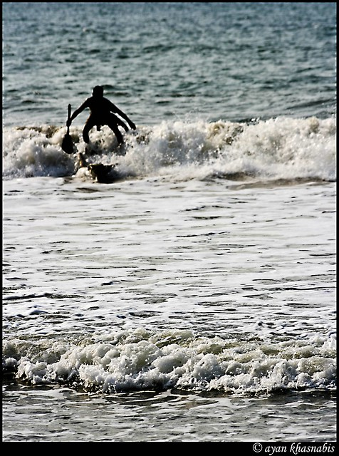 Surfing to Live