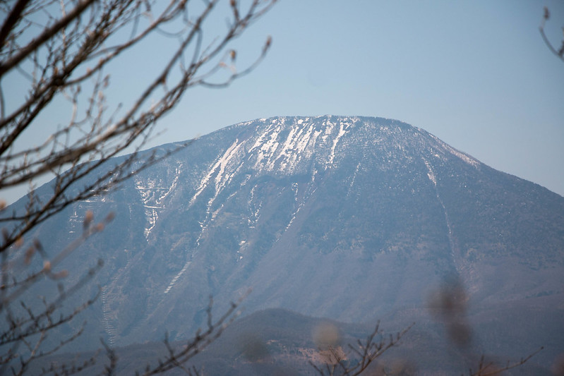 20150425-鳴虫山-0255.jpg