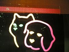 Neon (Cat + Dog) | by lukatoyboy