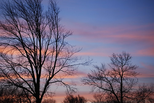morning trees sky usa beautiful sunrise wow wonderful dawn us newjersey amazing nice nikon pretty unitedstates gorgeous awesome great nj excellent monmouthcounty lovely 2008 bayshore welldone 55200mm unionbeach d80 neloesteves zip07735