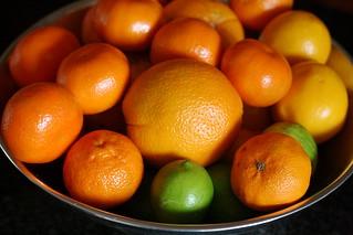 Citrus | by kristin :: thekitchensink