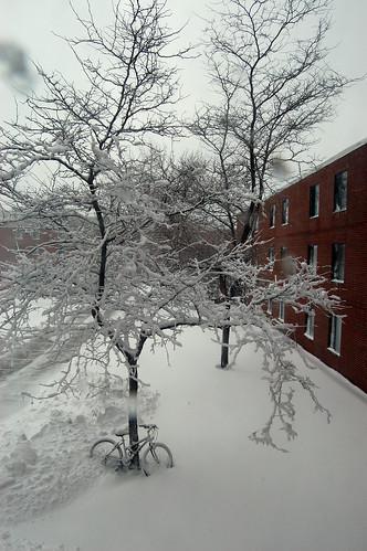 SNOW EFFIN' DAY!!!!