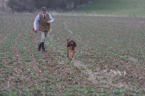 Bloodhound Trials Feb 2008 -189