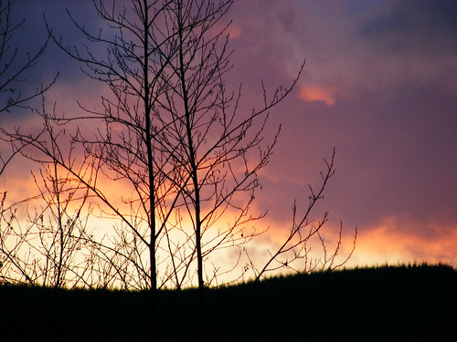 trees sunset mountain colour nature clouds soe blueribbonwinner