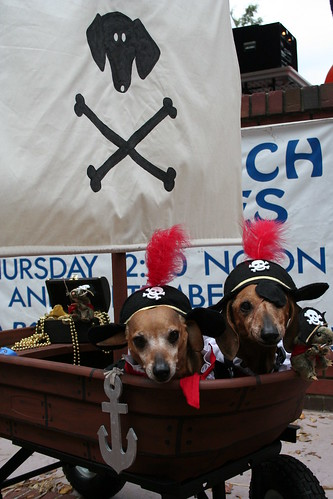 dog grandprize pirate ship | by City of Marietta, GA