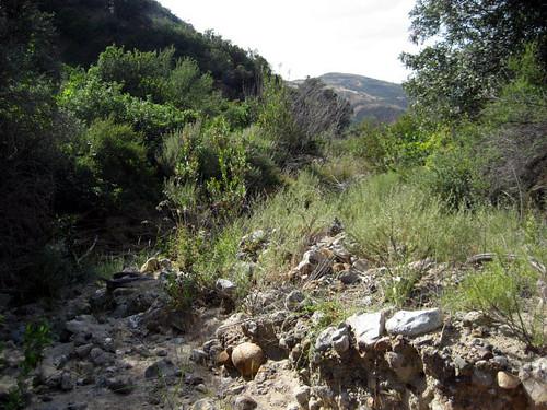 Coal Canyon Hike 3359 | by colleengreene