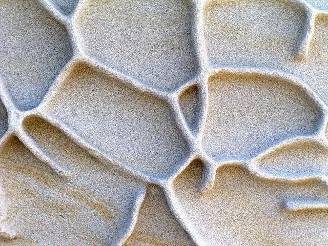 Kurnell Sandstone