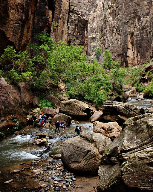 Crossing the river, Zion Narrows (Zion National Park)