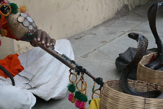Snake Charmer, Jaipur India | by california cowgirl1