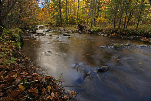 new autumn england fall water stream foliage