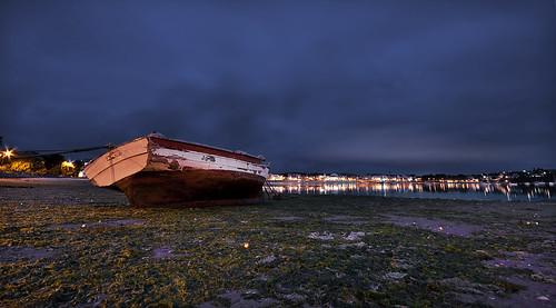 Barca varada en las algas