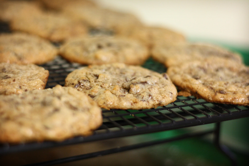 chocolate chunk and toasted coconut cookies by ginnerobot