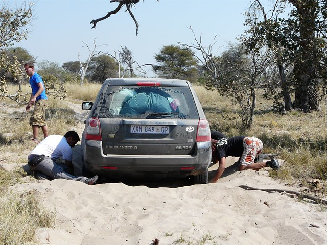 Coche atrapado en las arenas de Moremi (Botswana)