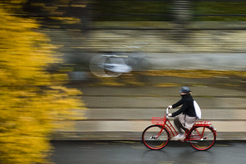 Copenhagen Autumn Morning | by Mikael Colville-Andersen