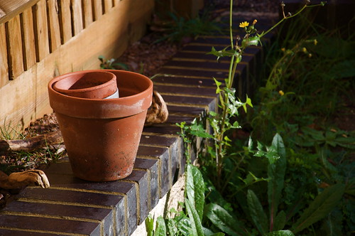 Flower Pots | by Yandle