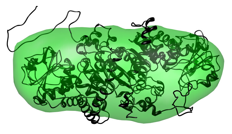 Protein structures revealed at record pace
