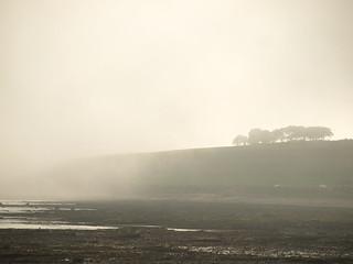 Arbroath cliffs | by michebradley