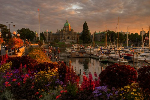 world pictures old city longexposure pink flowers sunset urban canada reflection building water colors clouds buildings reflections boats outdoors photography photo interestingness amazing fantastic twilight colorful day glow cityscape bc shot cloudy photos shots pics dusk earth britishcolumbia sony capital scenic picture parliament images victoria canadian vancouverisland capitol views stunning pacificnorthwest northamerica alpha dslr legislature hdr highdynamicrange 1000 comments touristattraction jamesbay innerharbour outstanding a300 photomatix harbourferry tonemapped tonemapping explored greatervictoria frontpageexplore dslra300 sonya300