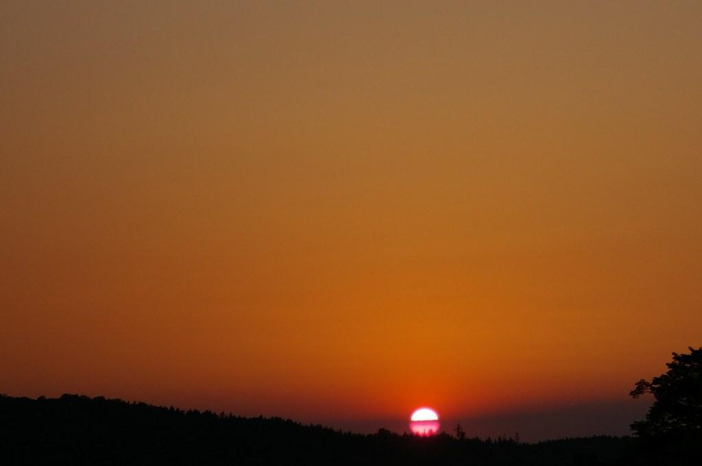 Słońce zachodzi za kornackim lasem / Sun is setting behind the Kornatka forest