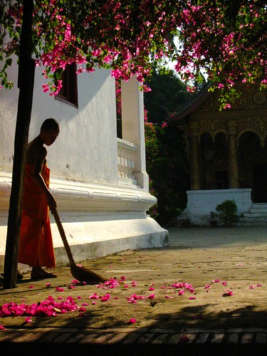 A Monk Sweeps | by Meredith Rendall Photography