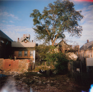St. Lawrence tree [holga] | by Bryan Bruchman