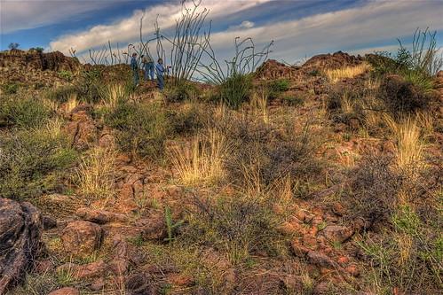 sun nature sunshine texas peace desert wind solitario bigbend sauceda princessstandintherainvacation