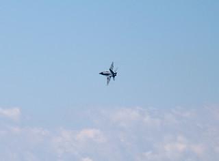 CF-18 Hornet | by cetaylor
