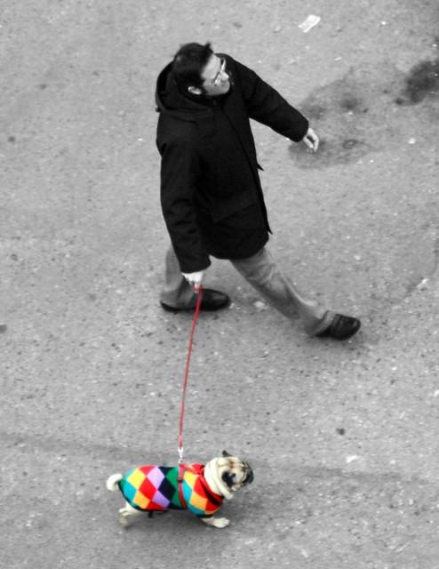 Cappottino colorato ...rivisto