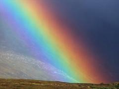 Rainbow on Ben Nevis   by Alex R Dixon