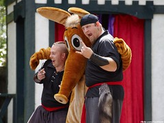 Aardvark Torture Show