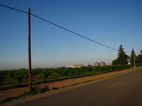 road ca morning rural sunrise grove farm yubacity bogue